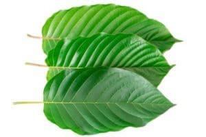 where to buy green kratom capsules