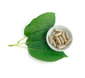 read green leaf kratom review